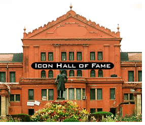 Icon Hall of Fame